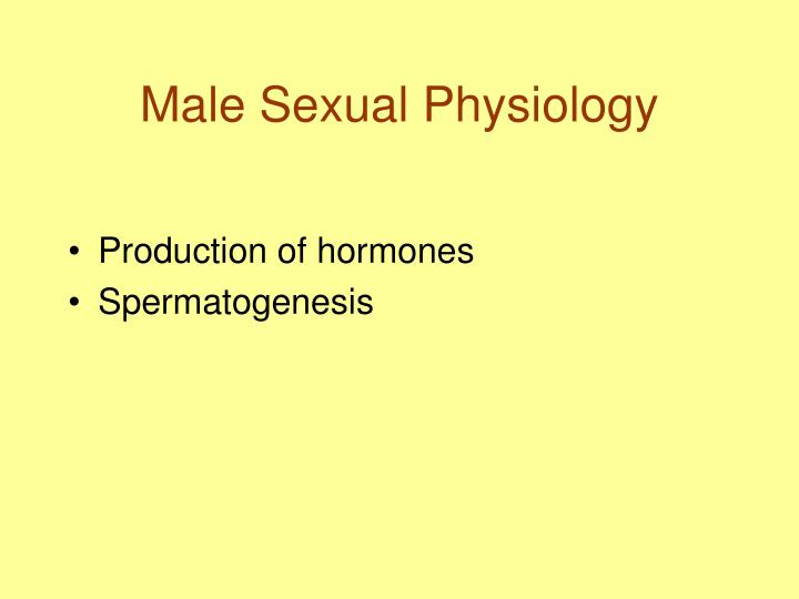 Male Sexual Physiology