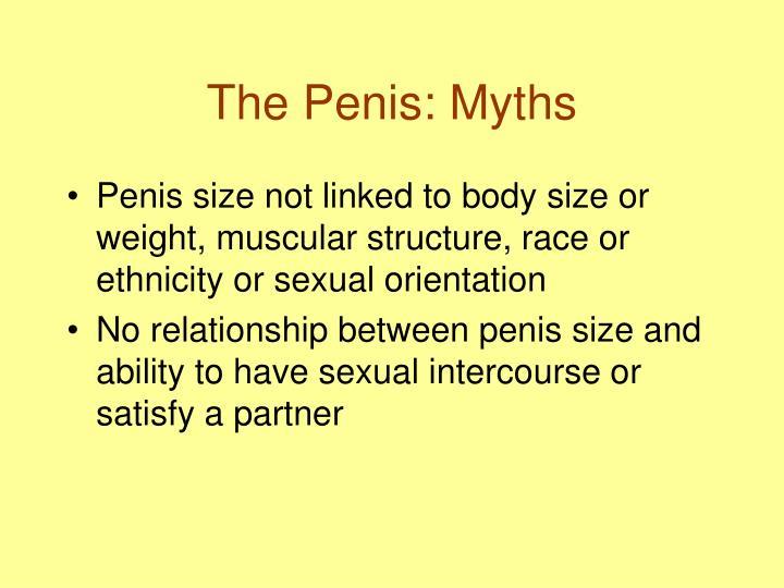 The Penis: Myths