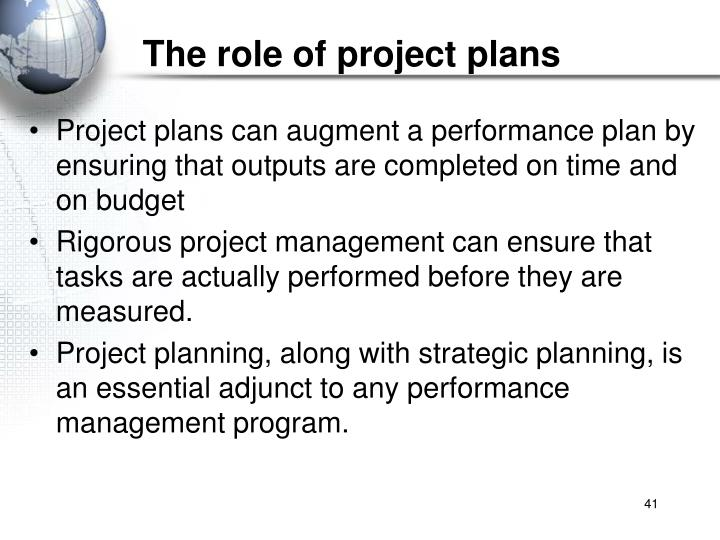 The role of project plans