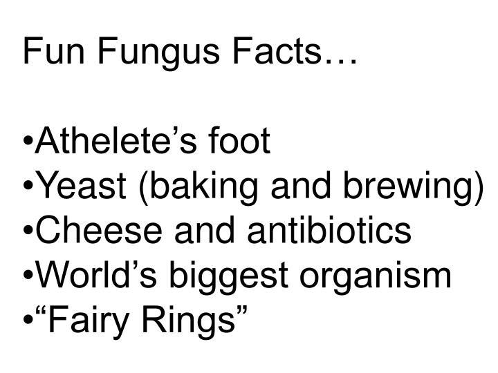 Fun Fungus Facts…
