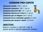 consumi pro capite