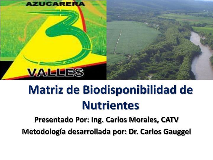 matriz de biodisponibilidad de nutrientes n.
