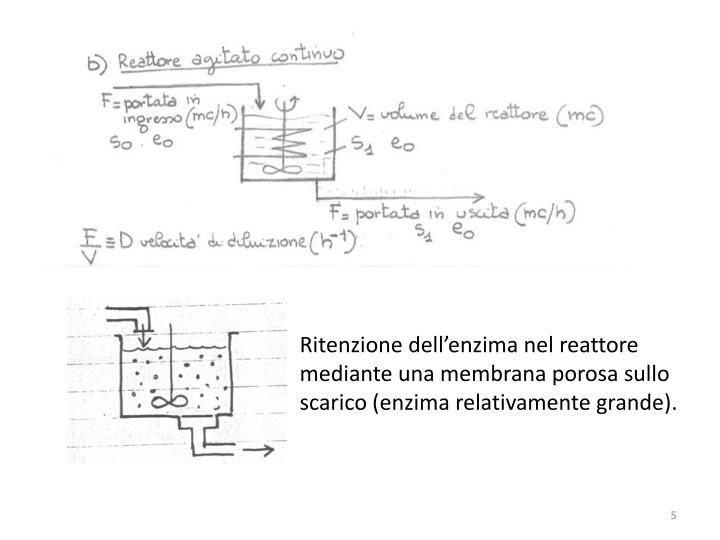 Ritenzione dell'enzima nel reattore mediante una membrana porosa sullo scarico (enzima relativamente grande).