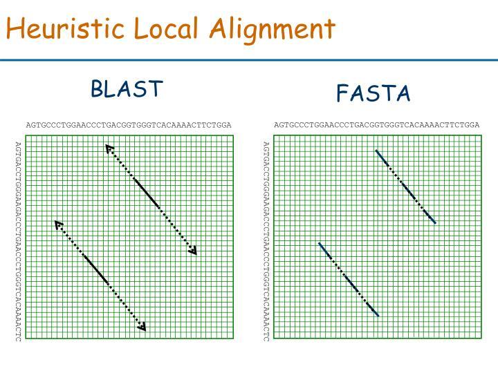 Heuristic Local Alignment
