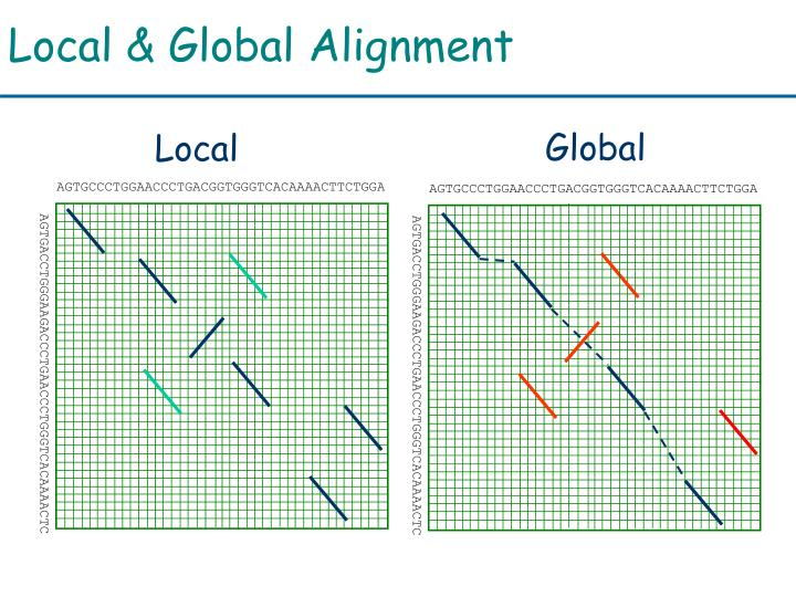 Local & Global Alignment