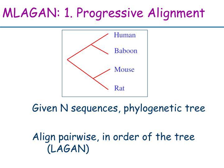 MLAGAN: 1. Progressive Alignment