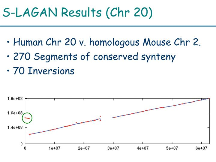 S-LAGAN Results (Chr 20)