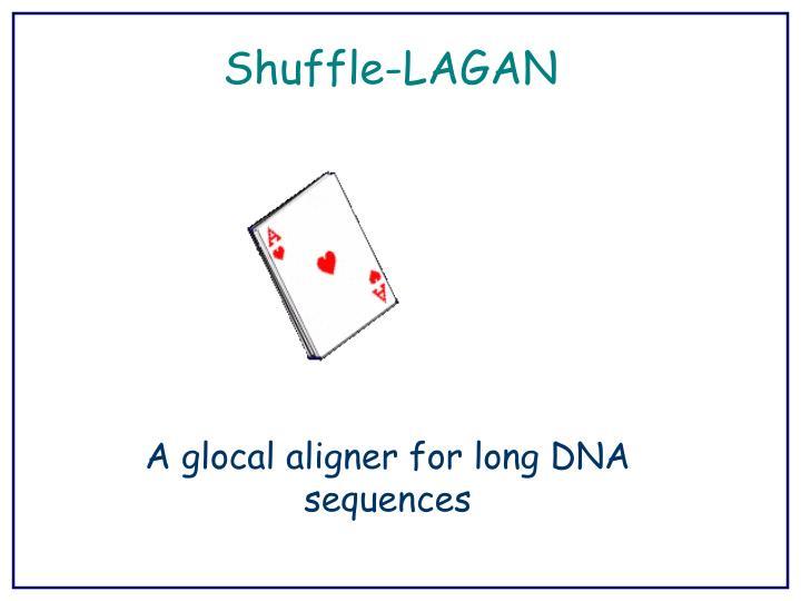 Shuffle-LAGAN