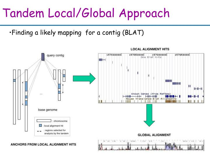 Tandem Local/Global Approach