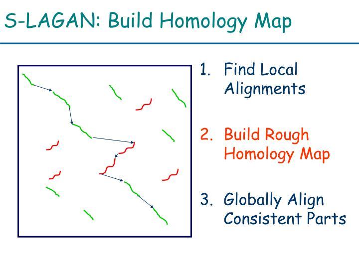 S-LAGAN: Build Homology Map