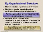 eg organizational structure