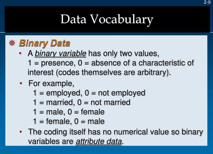 Data Vocabulary