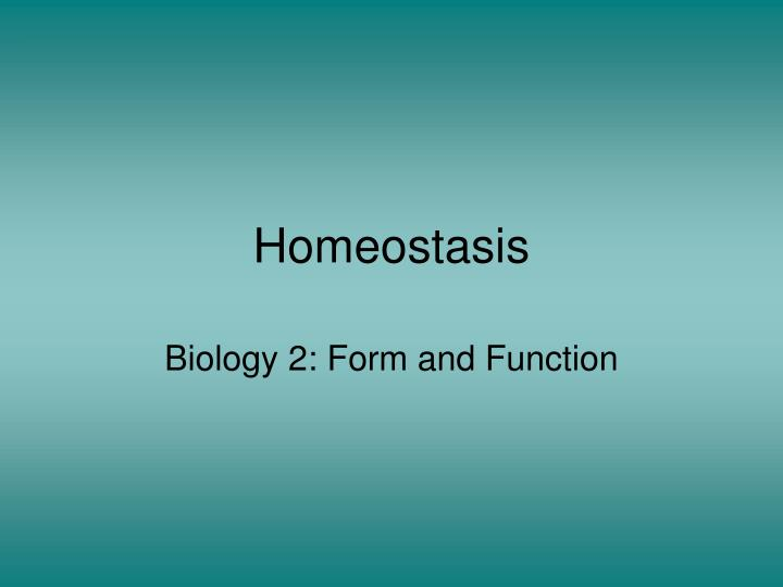 homeostasis n.