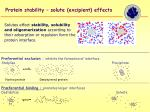protein stability solute excipient effects