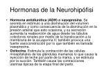 hormonas de la neurohip fisi