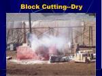 block cutting dry1