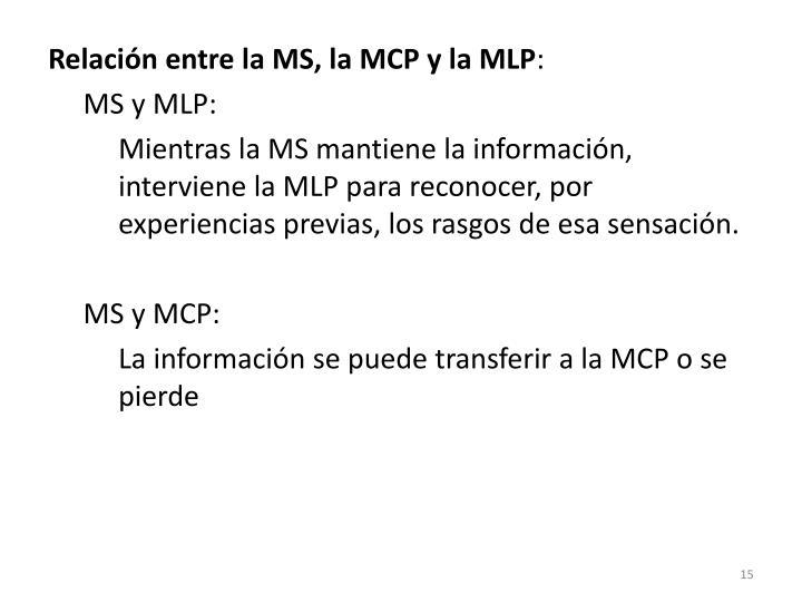 Relación entre la MS, la MCP y la MLP