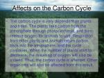 affects on the carbon cycle