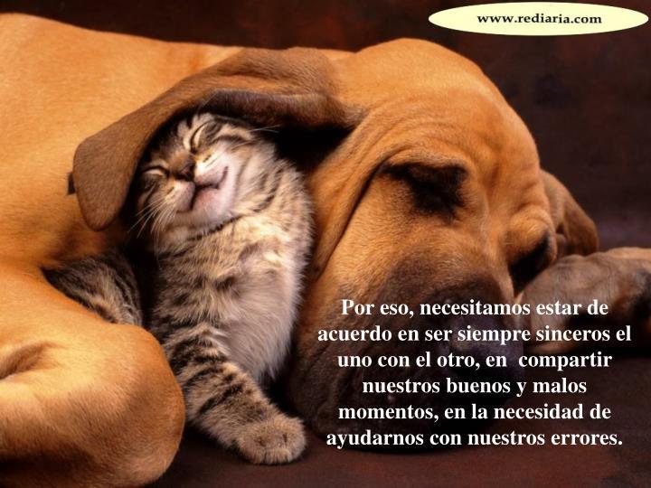 Por eso, necesitamos estar de acuerdo en ser siempre sinceros el uno con el otro, en  compartir nuestros buenos y malos momentos, en la necesidad de ayudarnos con nuestros errores.