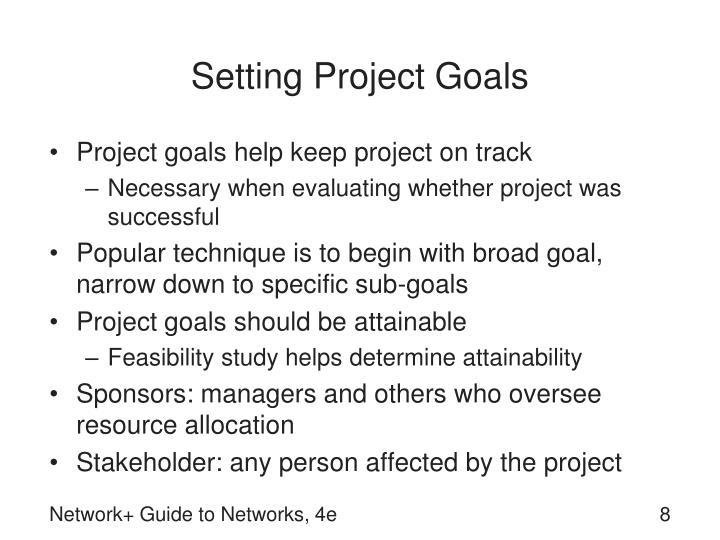 Setting Project Goals