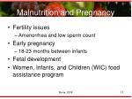 malnutrition and pregnancy