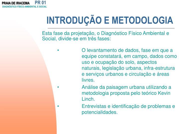 Introdu o e metodologia