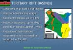 tertiary rift basin s