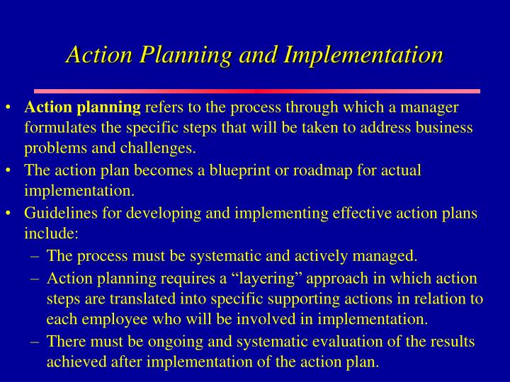 Action Planning and Implementation