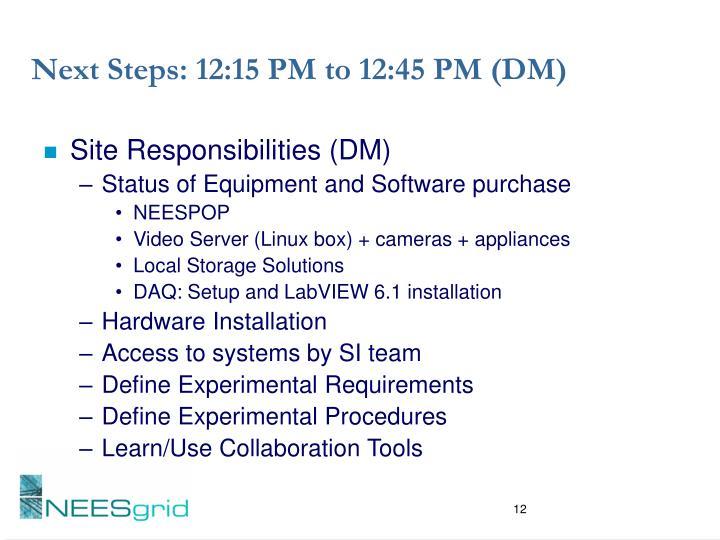 Next Steps: 12:15 PM to 12:45 PM (DM)