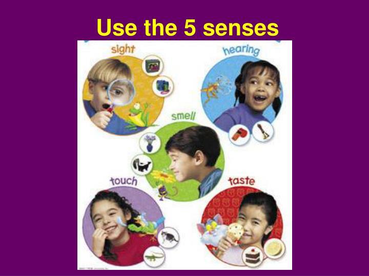 Use the 5 senses