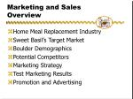 marketing and sales overview