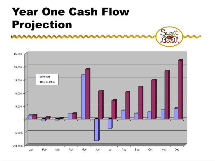 Year One Cash Flow Projection