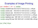 examples of image printing
