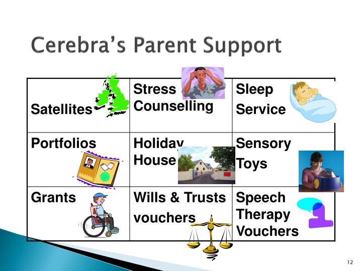 Cerebra's Parent Support