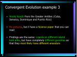 convergent evolution example 3