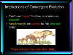 implications of convergent evolution