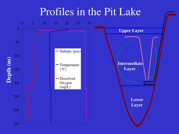 Profiles in the Pit Lake