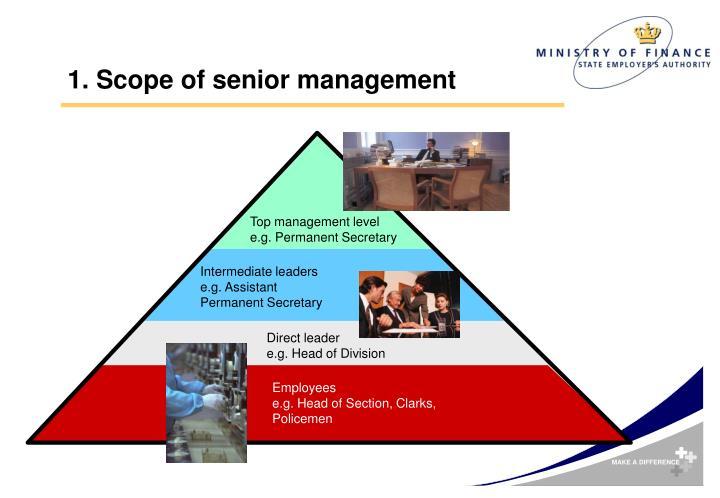 1 scope of senior management