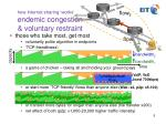 how internet sharing works endemic congestion voluntary restraint
