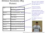 defense taxonomy big picture1