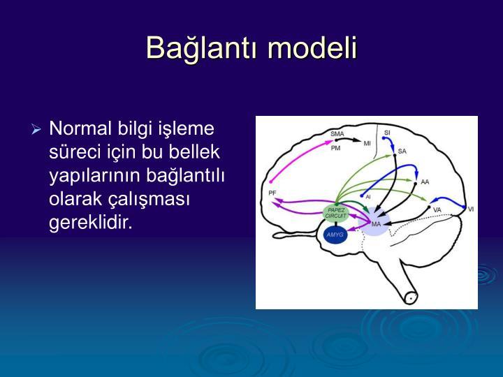 Bağlantı modeli