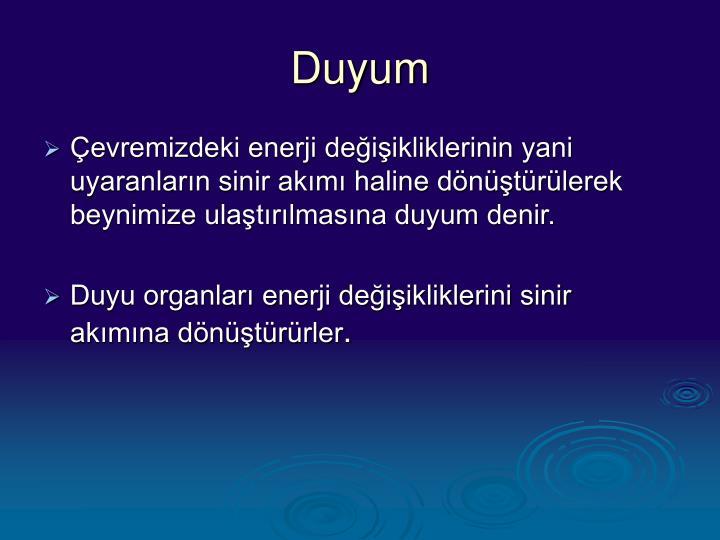 Duyum