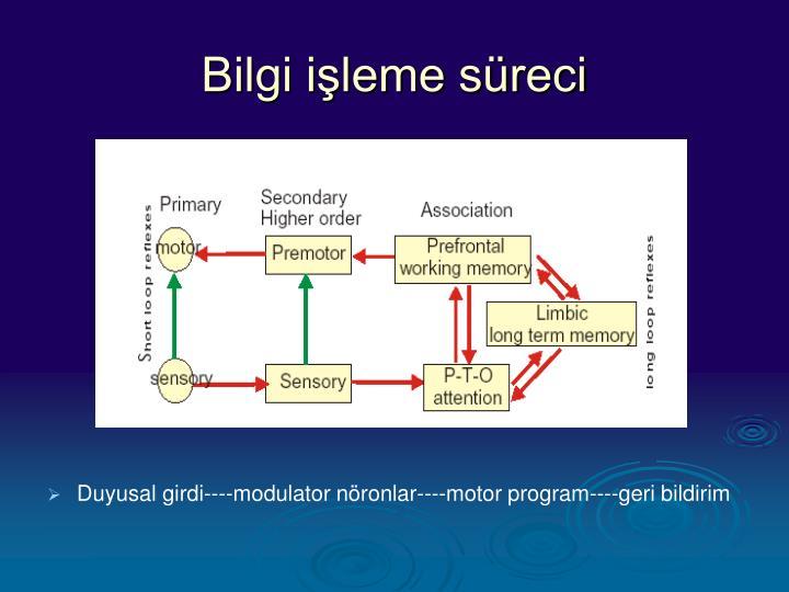 Bilgi işleme süreci