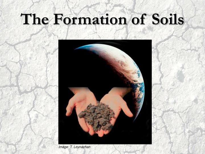 The Formation of Soils