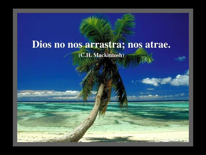 Dios no nos arrastra; nos atrae.