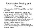 rna marker testing and primers