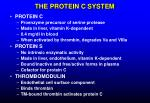 the protein c system