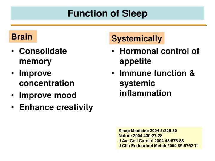 Function of sleep