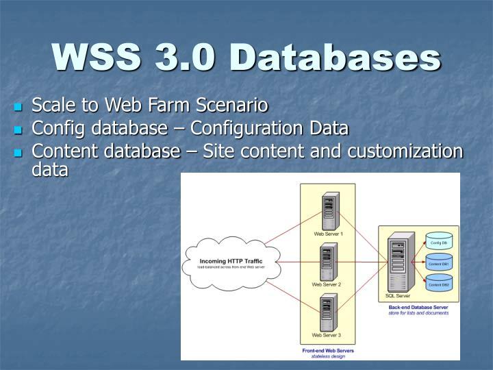 WSS 3.0 Databases