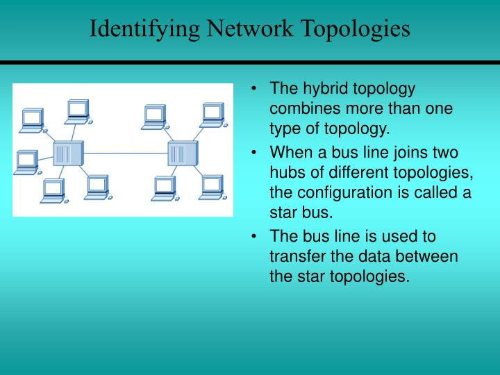 Identifying Network Topologies